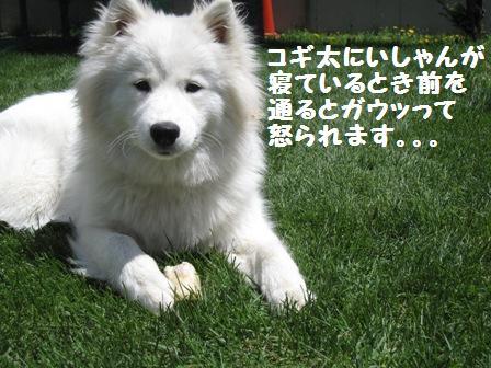 f0212597_16141856.jpg