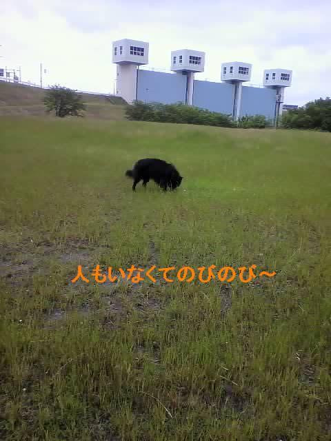 f0109202_113543.jpg