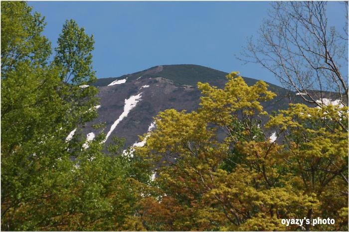 山頂 チラリ_a0071514_19254827.jpg