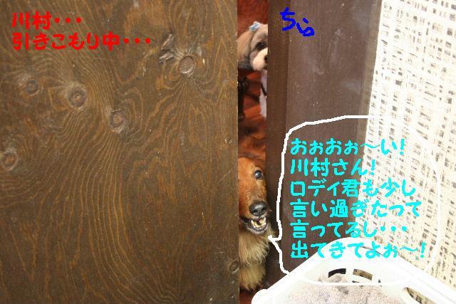 b0130018_1347223.jpg