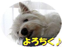 f0084422_0205029.jpg