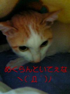 f0192630_18245410.jpg