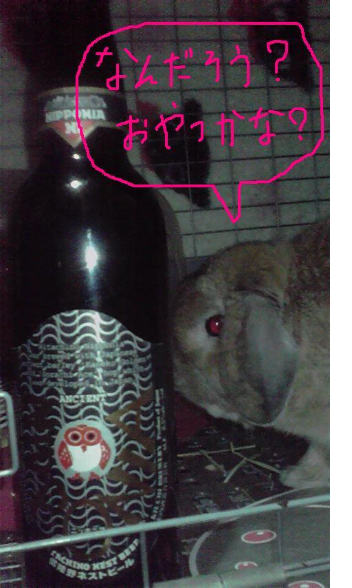 常陸野ネストビール「ニッポニア」発売開始!_c0175182_9462498.jpg