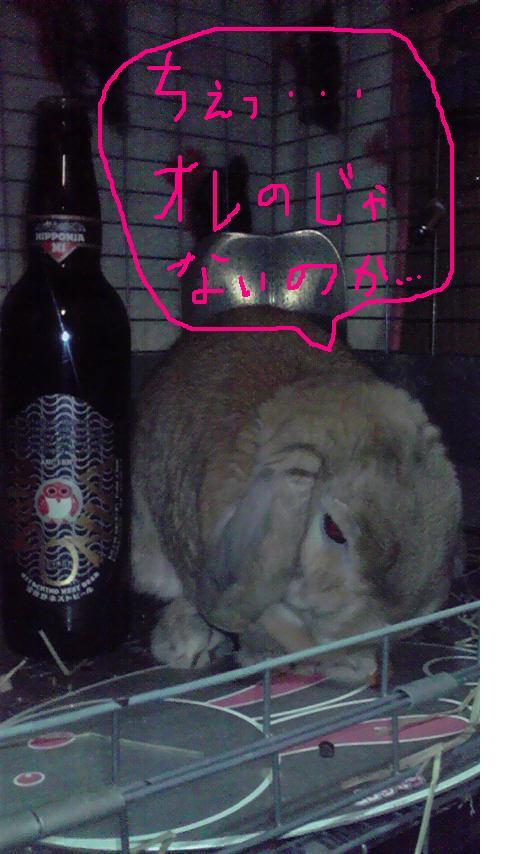 常陸野ネストビール「ニッポニア」発売開始!_c0175182_9474472.jpg