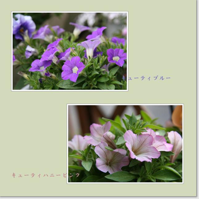 f0146493_1393362.jpg