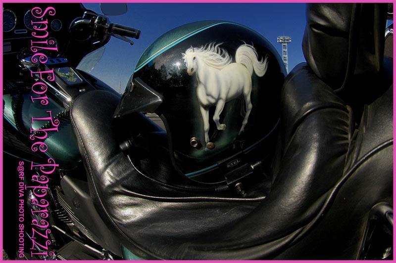 WHITE HORSE_c0177037_13484174.jpg