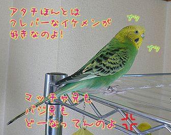 f0196665_005840.jpg