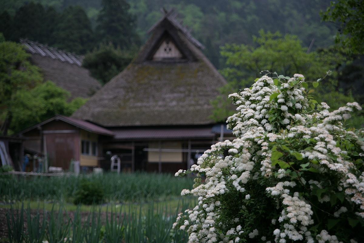 京都 美山  茅葺の里   6_f0021869_2301337.jpg