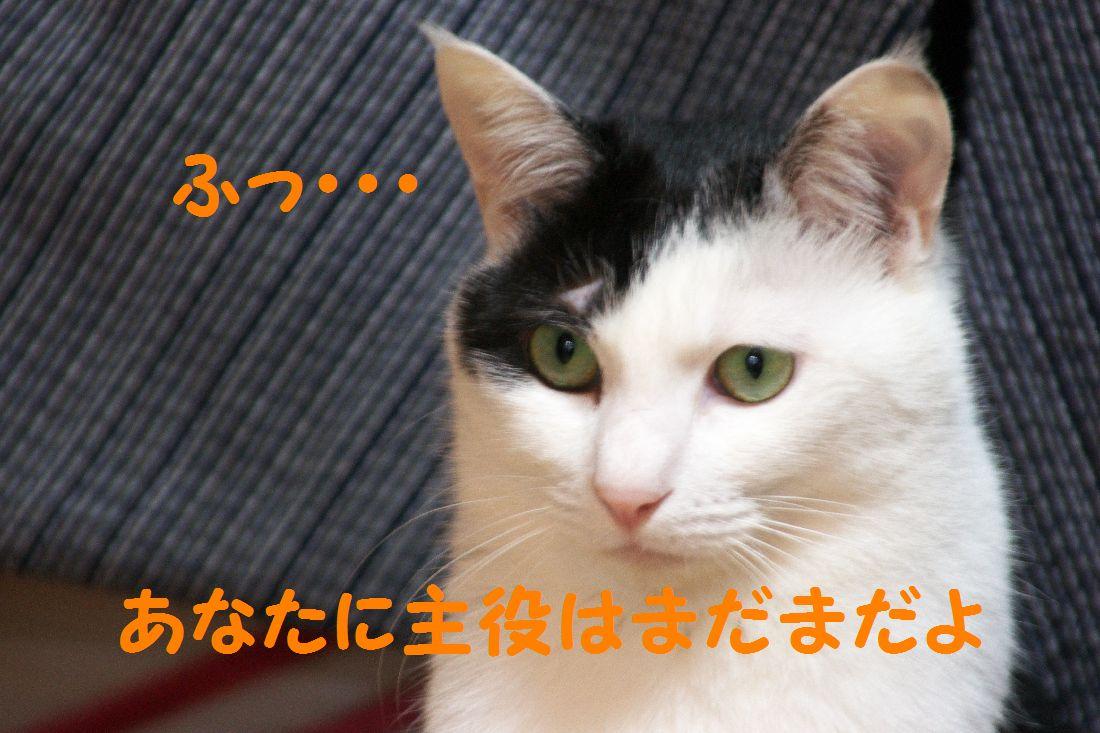 f0197682_1651033.jpg