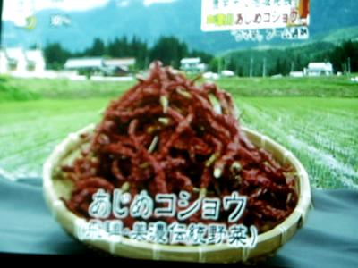 『あじめカレー』名古屋TV UP!で放送_d0063218_1050432.jpg