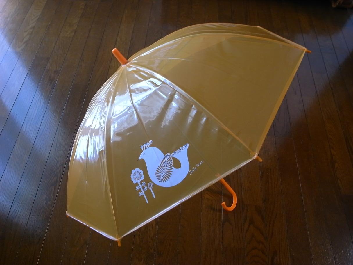 サリースコットさんの傘_f0009782_19255815.jpg