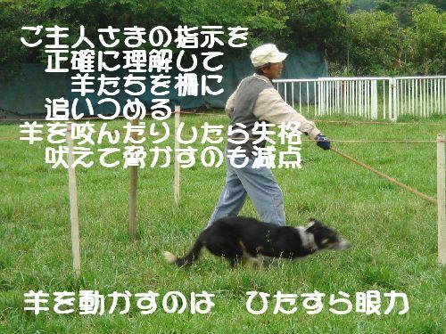 b0101991_22281477.jpg