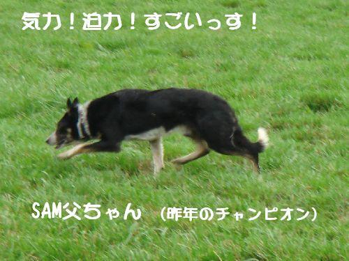 b0101991_22311322.jpg