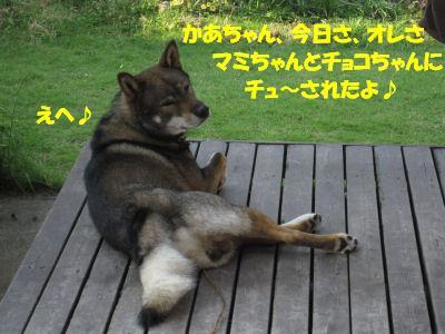 f0143123_201308.jpg