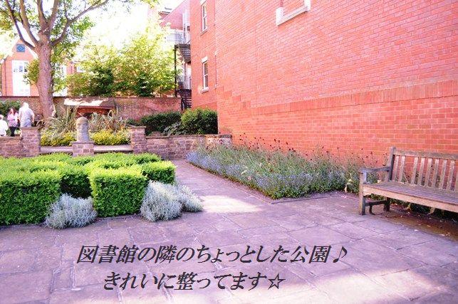 5分おつまみ☆アスパラのガーリックカレー照り焼き_d0104926_595525.jpg