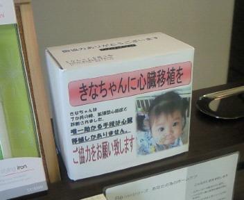 きなちゃんを救う会_a0111845_16161557.jpg