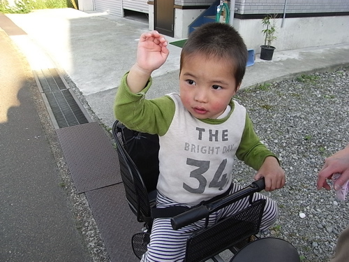 from新潟、母便り〜_f0170995_13222728.jpg