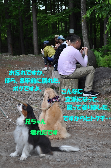 b0067012_234094.jpg