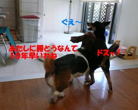 f0121712_1854793.jpg