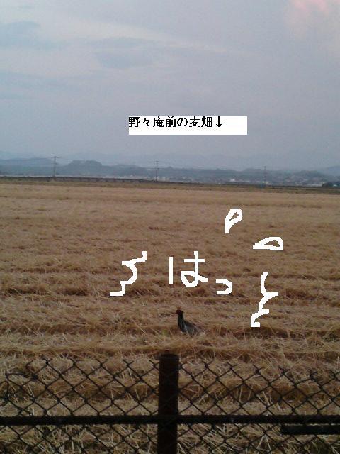f0224320_955691.jpg