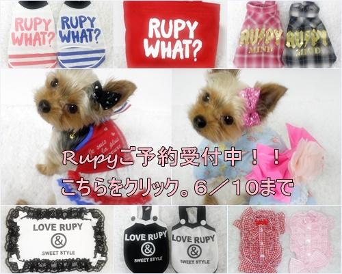 RUPY Lust Summer コレクションの先行予約のお知らせ_b0084929_16221578.jpg
