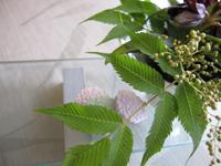 お茶を楽しむ簡単和菓子_d0139350_19303634.jpg