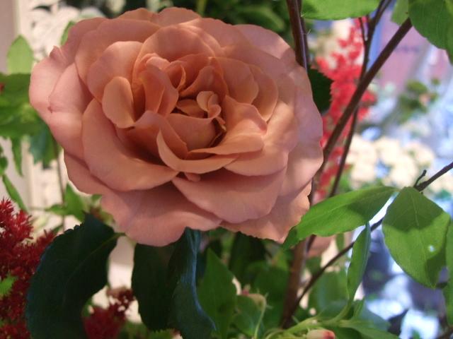 オークリーフ花の教室(石井さんの作品)_f0049672_18185456.jpg