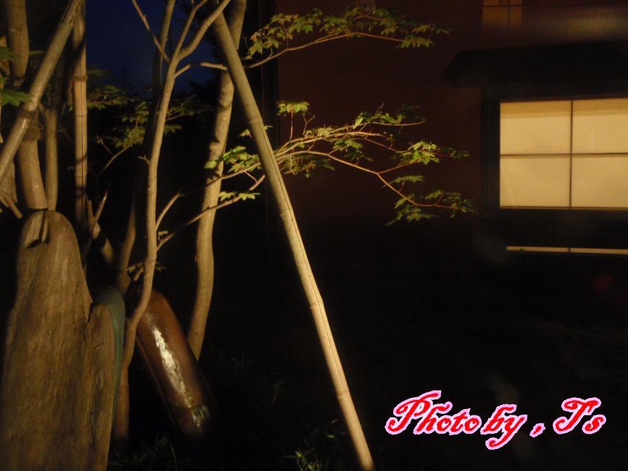 f0147821_17305377.jpg