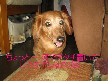 c0206342_20351386.jpg