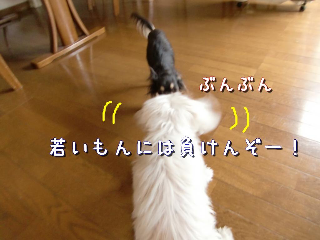 b0122046_1324578.jpg