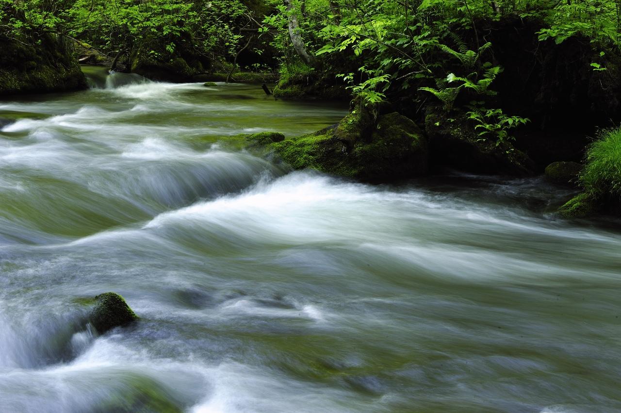 奥入瀬の流れ_e0171886_654199.jpg
