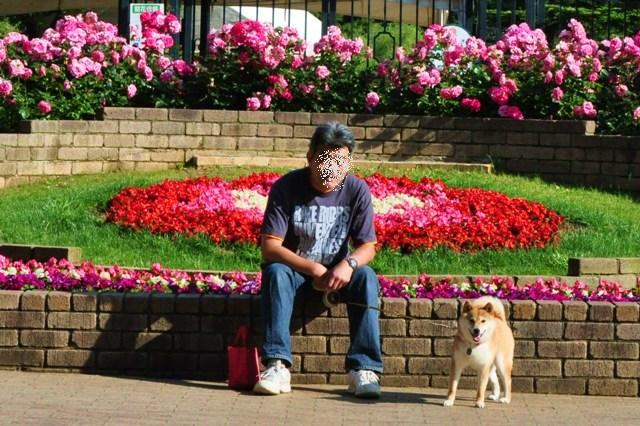 薔薇の花に囲まれて_a0126590_2149291.jpg