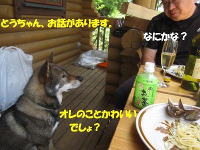 f0143123_2001897.jpg