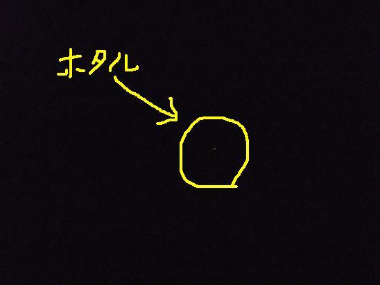 e0164724_12221311.jpg