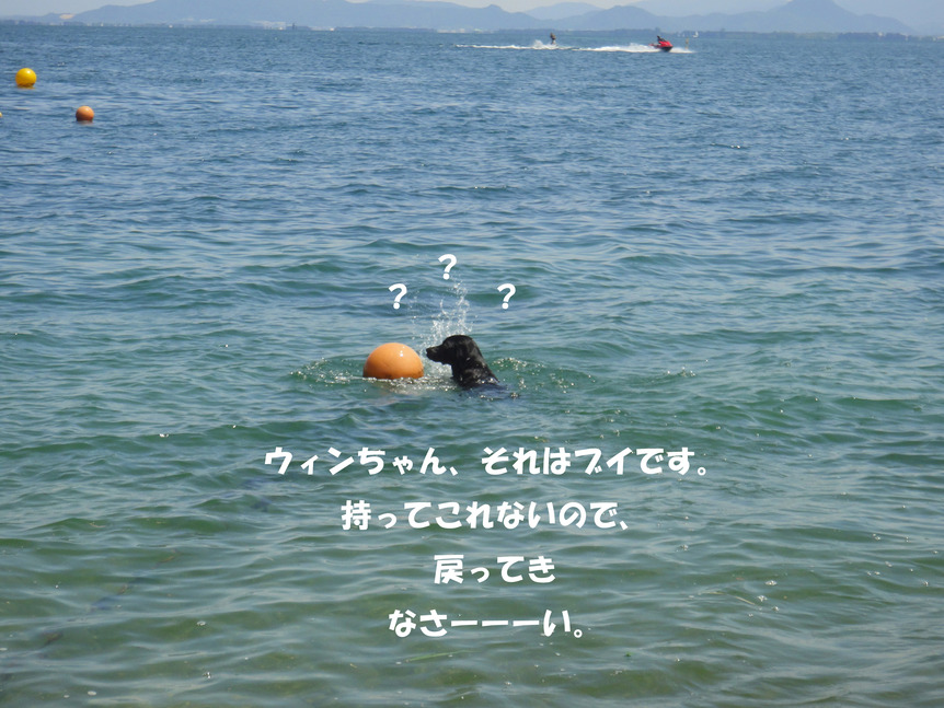 f0232548_1893370.jpg
