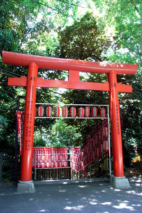 入間 ~ 秋川 ~ 東伏見稲荷神社 (6/6) 日枝神社 (6/4)_b0006870_013765.jpg
