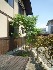 甲州雨畑硯 (こうしゅう あまはたすずり)_d0078471_10394045.jpg