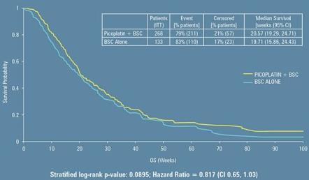 ASCO 2010速報:SCLC患者へのpicoplatin+BSC_e0156318_1145103.jpg