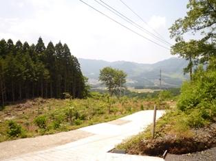 f0031420_2011851.jpg
