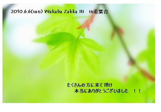 d0157721_5391929.jpg