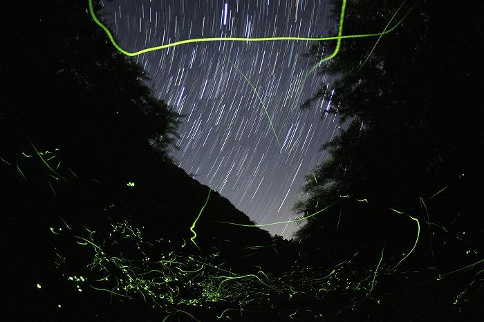 星降り注ぎ、星舞い飛ぶ水辺にて・・・_a0122544_19164278.jpg