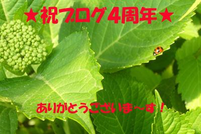 d0070047_21192599.jpg