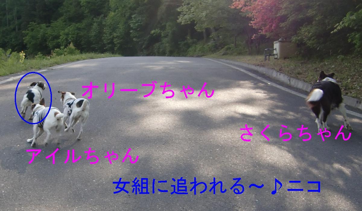 c0140260_9251349.jpg