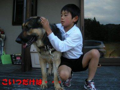 b0113663_832559.jpg