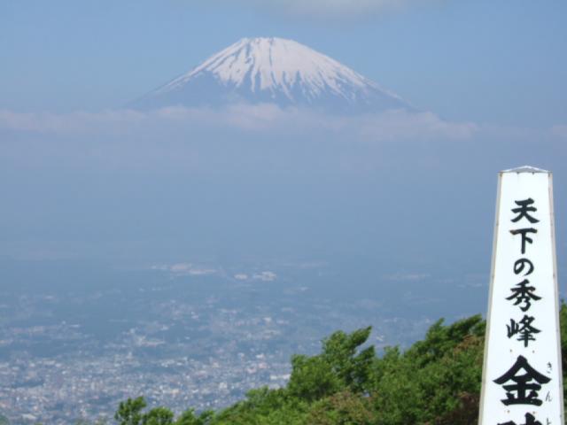 箱根・金時山の花 Vol.63 _e0024094_21382983.jpg