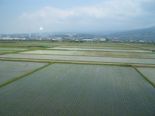「アルコロジーin東静(富士)」と沼川、滝川、田宿川_f0141310_2335521.jpg