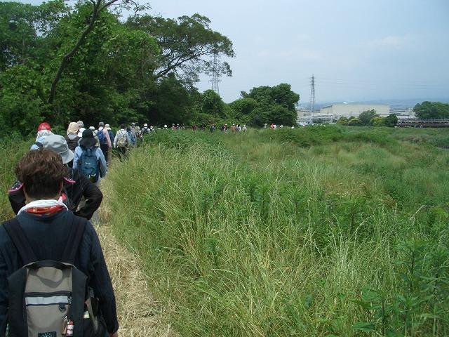 「アルコロジーin東静(富士)」と沼川、滝川、田宿川_f0141310_23412043.jpg