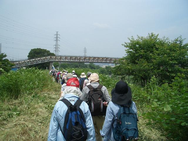 「アルコロジーin東静(富士)」と沼川、滝川、田宿川_f0141310_2341726.jpg