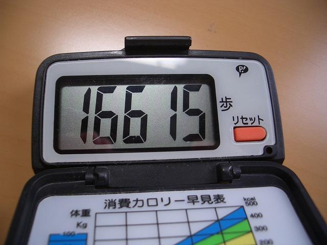 「アルコロジーin東静(富士)」と沼川、滝川、田宿川_f0141310_23443476.jpg