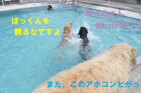 f0176830_17332445.jpg